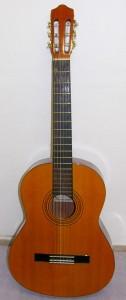 kytara-ruda-3